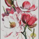 MAGNOLIA CAMPBELLII cross stitch pattern