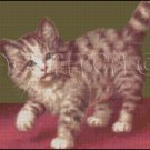 TABBY KITTEN cross stitch pattern