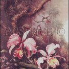 ORCHIDS AND HUMMINGBIRDS cross stitch pattern