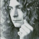 Robert Plant cross stitch pattern No.761