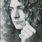 Robert Plant cross stitch pattern No.761