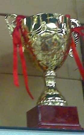 "10.75"" GOLD TONE Quality METAL TROPHY Reward CUP Sport"