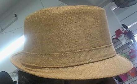 Beige Fedora Unisex One Size Hat
