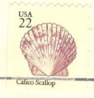 Calico Scallop 22 cent Stamp Seashells Booklet Issue FDI SC 2120 First Day Issue