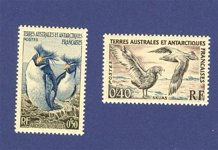French Colony 2 stamps from French Antarctica