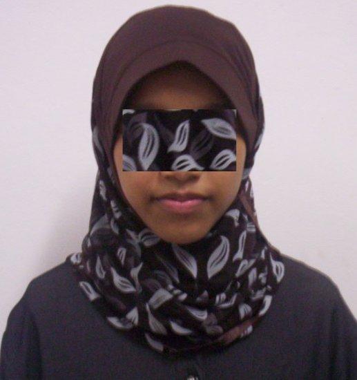 New~1pc Kuwaiti Hijab~Amira~Mona~Muslim/Islamic Head Scarf~Tudung~Kleidung (ID 3361-BrGy)