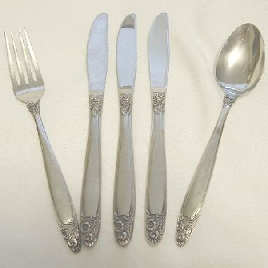 5 Pieces Present Stainless Flatware Elena Free Shipping