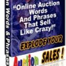 1079 Auction Words and Phrases