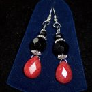 Ruby Quartz/Black Onyx/earrings.