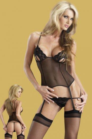 SEXY Sheer Bustier Garter Open Cup Bust Lace Lingerie