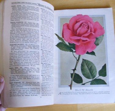 ROSES Bobbink & Atkins 1929 Antique Catalog American Grown