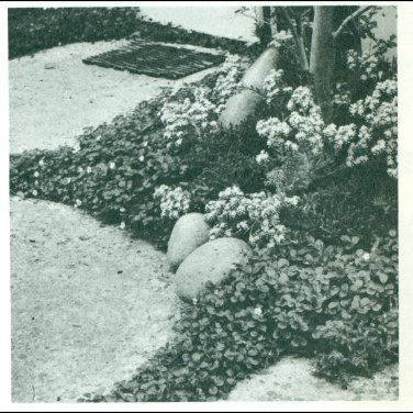 ROCK GARDENS Plan and Build Landscaping Book Mid Century Modern 1964 Eckbo