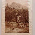 1888 Photogravure on Satin Picturesque California Muir Virgil Williams