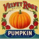 Velvet Rose Pumpkin Can label Brighton IO