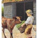 "Dr Free's York Dental Parlors Boy feeding Calf 3.5"" X 5.5 Trade Card"
