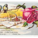 Victorian Trade Card J. A. Smith Organs York Pa Winter Cabin Scene Bird Red Rose