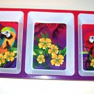 Parrot DIP TRAY party dish macaws