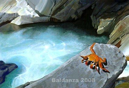 """red crab"" - original acrylic painting"