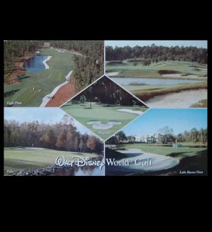 WALT DISNEY WORLD GOLF POSTCARD FLORIDA UNITED STATES