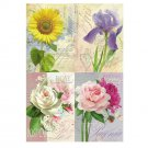 COLLECTION OF UKRAINIAN FLOWER DESIGN POSTCARDS AFRICAN DAISY