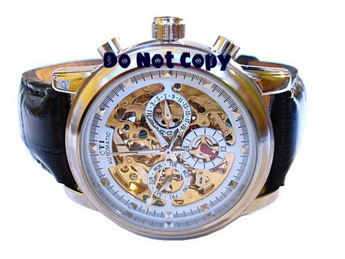 NEW Mens CTI 21 Jewels Swiss Automatic 18K Skeleton Leather Watch