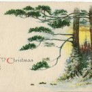 1916 Vintage Christmas Postcard Winsch back Pine Tree