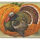1907 Vintage Thanksgiving Postcard turkey Pumpkin