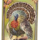 Vintage Thanksgiving Postcard Turkey ca 1910