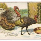 1908 Julius Bien Turkey 9105 Vintage Thanksgiving Postcard