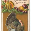 Vintage Thanksgiving Postcard Embossed Turkey ca 1910