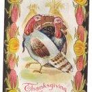 Nash  Vintage Thanksgiving Postcard Brown and White Turkeys Corn Pumpkin Frame