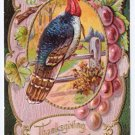Vintage Thanksgiving Postcard Embossed Turkey Grapes