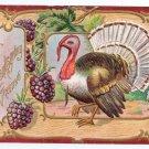 Jaeger Vintage Thanksgiving Postcard Embossed Turkey Grapes