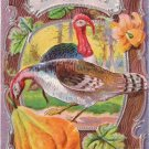 Vintage Thanksgiving Postcard Embossed Turkey Gourds