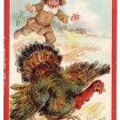 Brundage Boy Chasing Turkey Vintage Thanksgiving Postcard