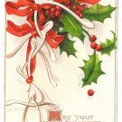 AS Clapsaddle Wishbones Holly 1908 Embossed Vintage Christmas Postcard