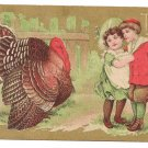 Children Turkey Gilded Vintage Thanksgiving Postcard 1909