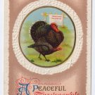 Turkey Embossed Vintage Thanksgiving Postcard