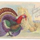 Turkey Haystack Vintage Thanksgiving Postcard Stecher Litho Series 777 C