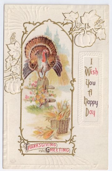 Turkey Embossed Vintage Thanksgiving Postcard 1912