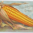 Ear of Corn Embossed Vintage Thanksgiving Postcard 1909