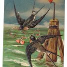 Swallows Buoy Hearts EAS Embossed Vintage Valentine Postcard