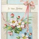 Apple Blossoms Embossed Vintage Birthday Postcard