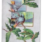 Birds Holly Branch Silver Vintage Christmas Postcard