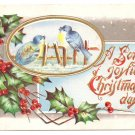 Blue Birds Holly Embossed Vintage Christmas Postcard