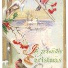 Birds Birdhouse Embossed Gilt Vintage Christmas Postcard