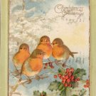 Birds Embossed Vintage Christmas Postcard