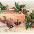 Merry Christmas Greetings Birds Insect Holly Embossed UND Tuck Vintage Postcard
