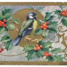 Blue Bird Holly Bough Embossed Gold Vintage Christmas Postcard 1911