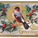 Winter Bird Holly Embossed Gold Gilt Vintage Christmas Postcard